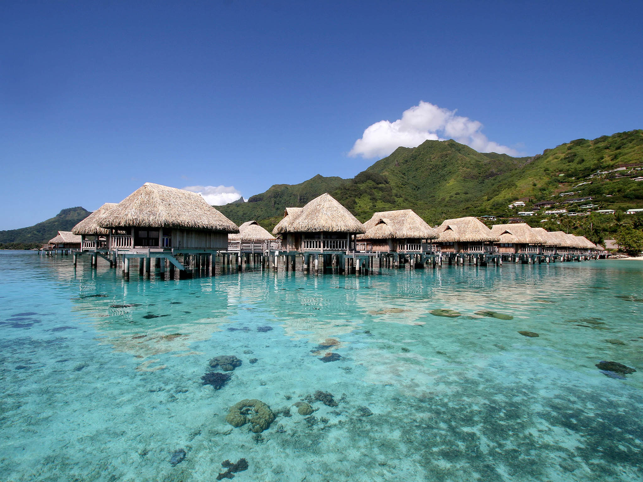 Sofitel Moorea La Ora Beach Resort Hotel