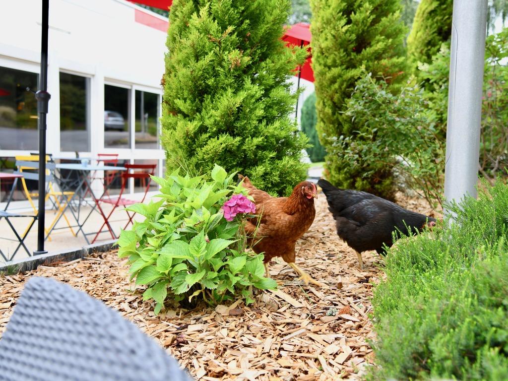 Goedkoop hotel quimper ibis quimper for Hotels quimper