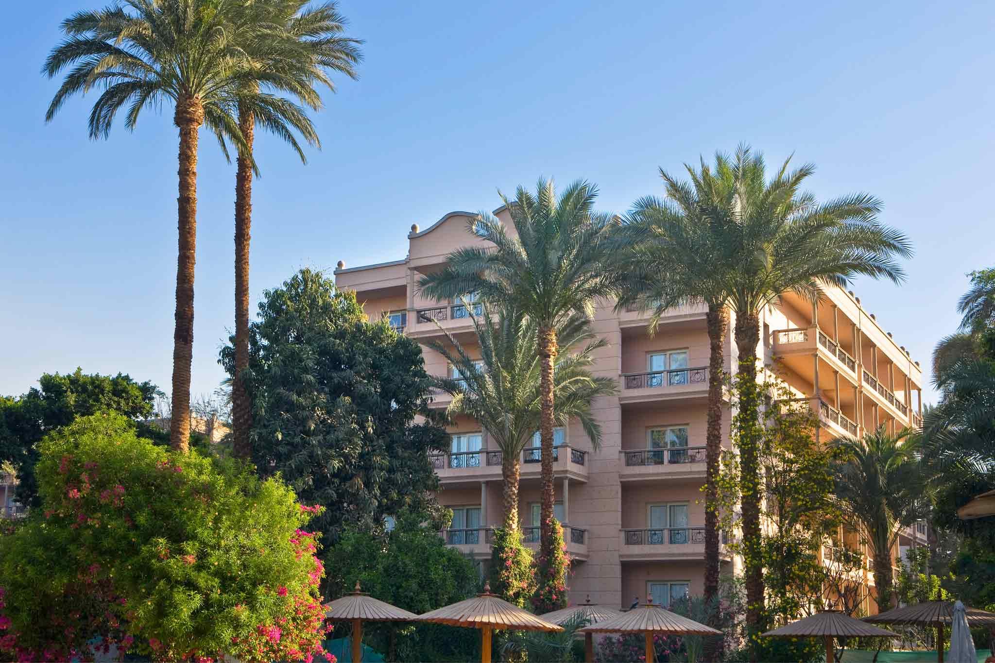 فندق - بافيون ونتر الأقصر