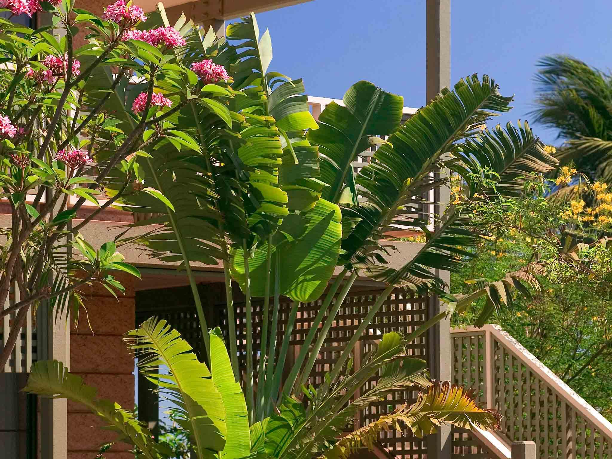 Hotel emily hotel r -  Hotel Ibis Styles Port Hedland