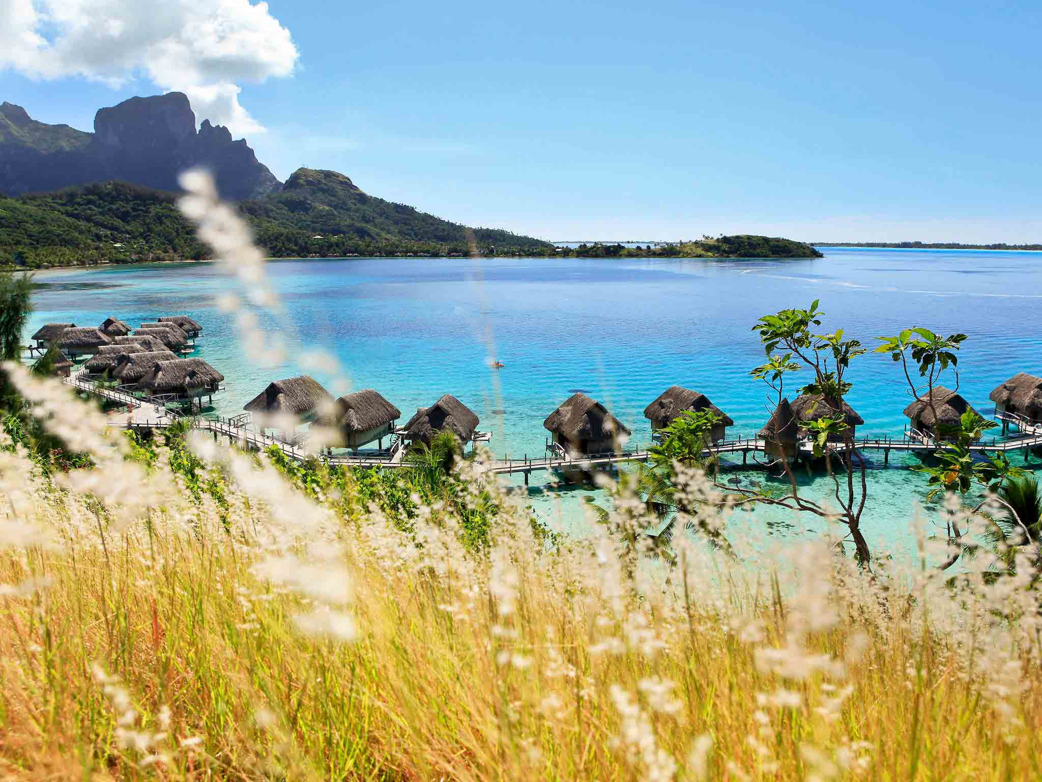 Sofitel bora bora private island hotel for Chambre 13 tahiti plage