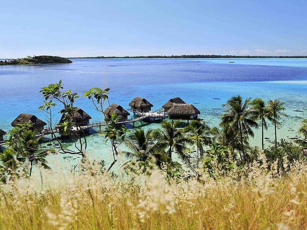 Bora Bora Picture Impremedia Net