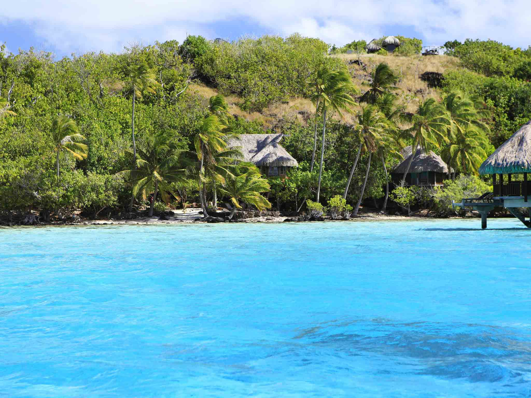 french polynesia the island of love Cruising french polynesia is as romantic as it gets and often the most affordable way to visit these luscious islands blooming with hibiscus.
