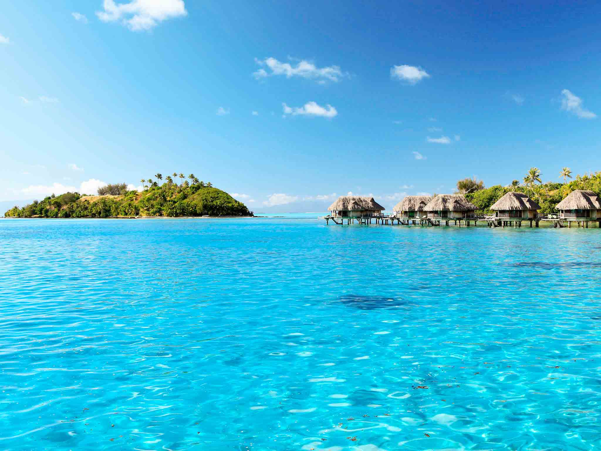 Sofitel Bora Bora Private Island Hotel | AccorHotels.com