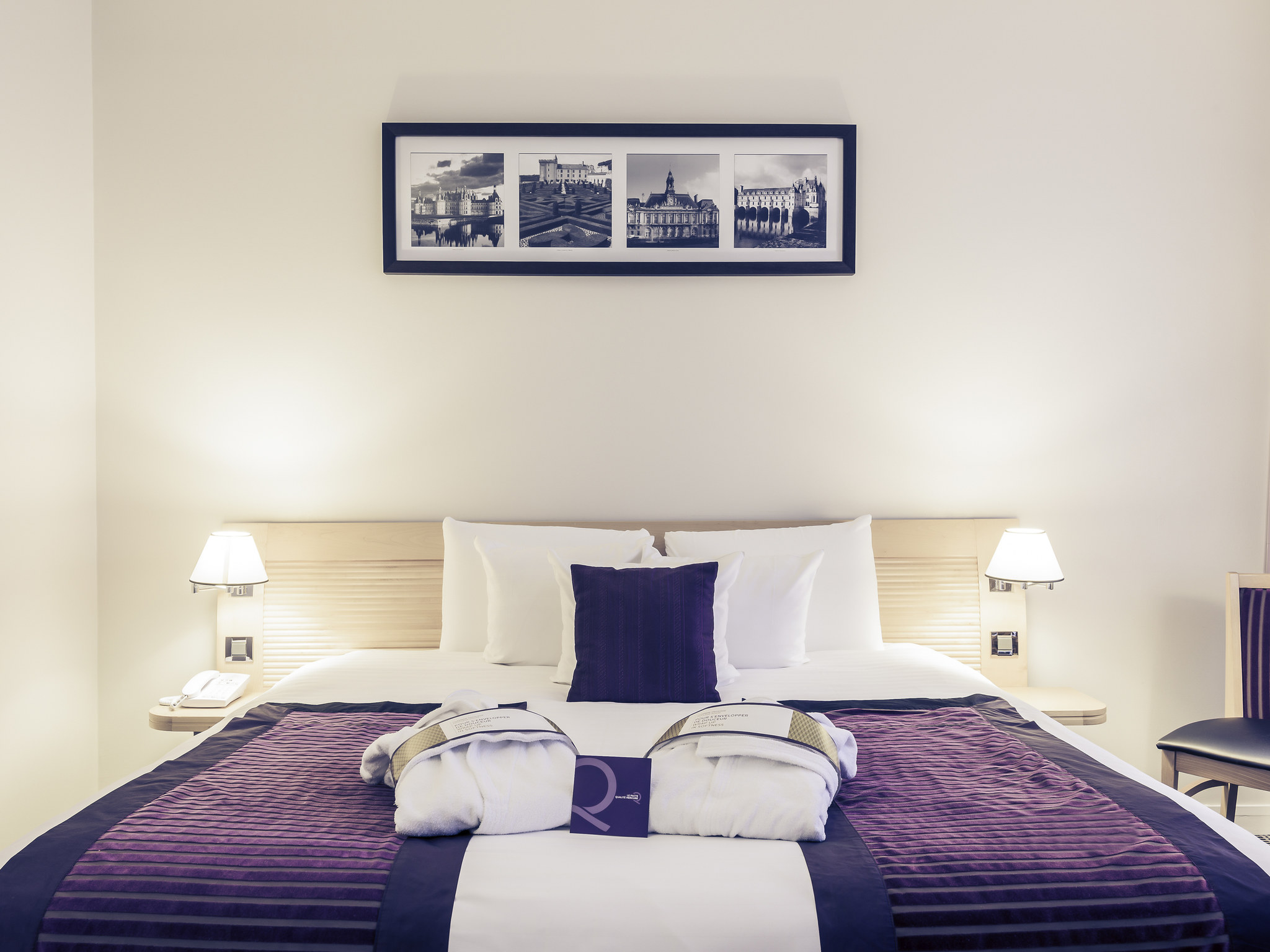 Hotel – Hotel Mercure Tours Centro Estación
