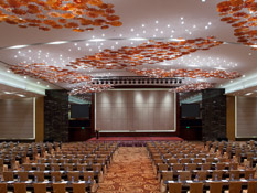 Enjoy our high-ceilinged Grand Ballroom (1,700 sq.m)