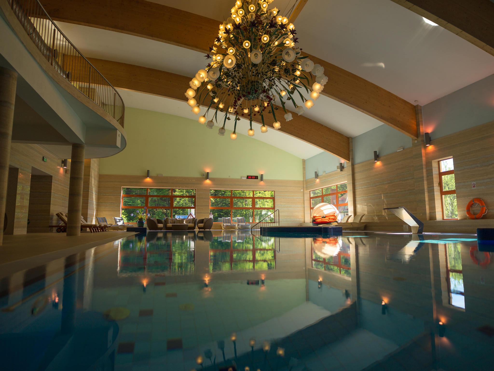 Hotel mercure krynica zdroj resort spa for Hotel salon