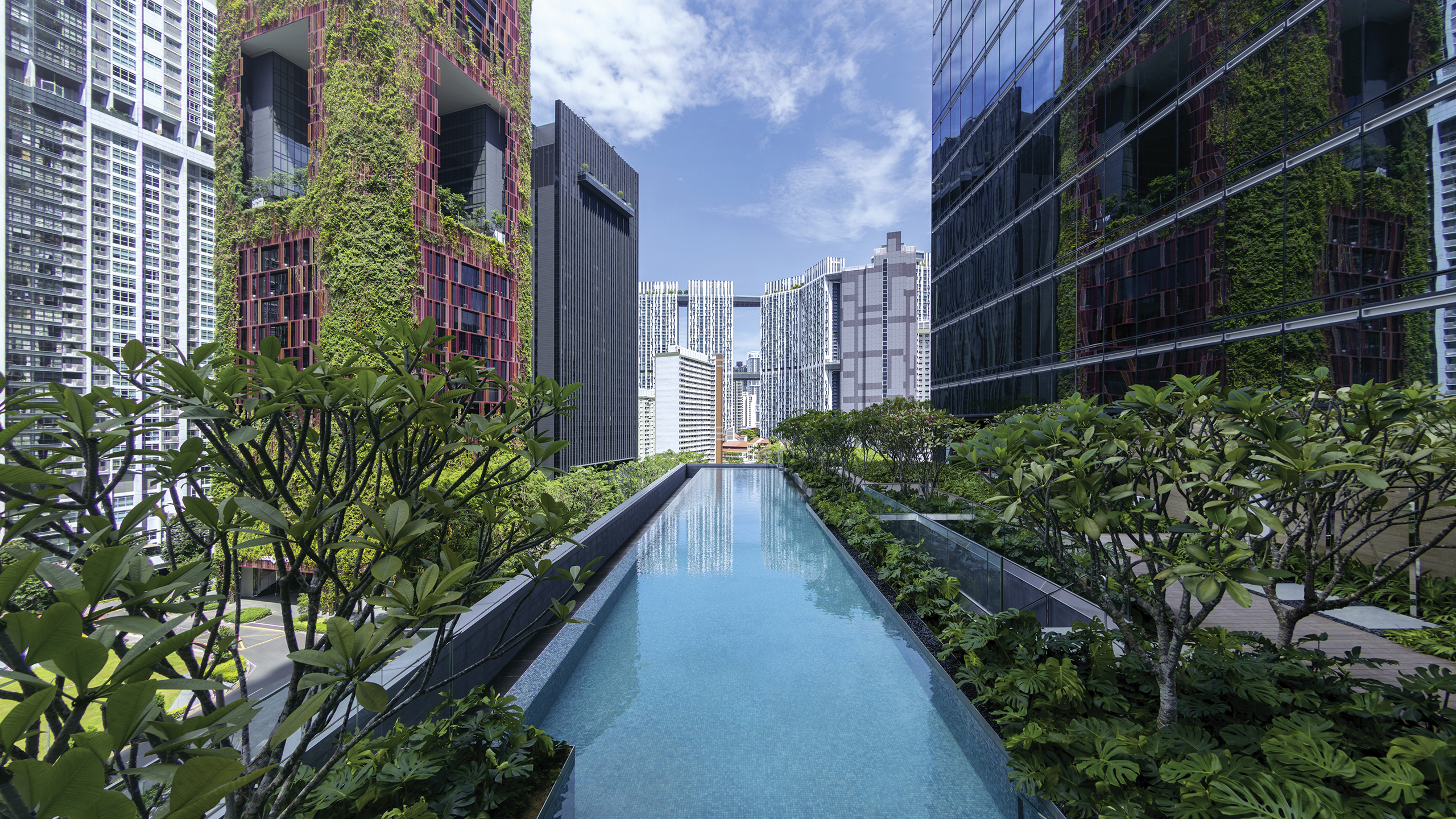 Luxury Hotel Singapore Sofitel Singapore City Centre