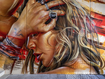 Art Series Perth The Adnate (Opening October 2019)