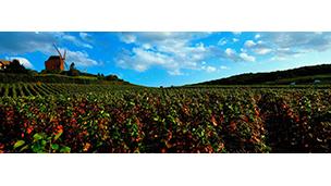 Fransa - Epernay Oteller