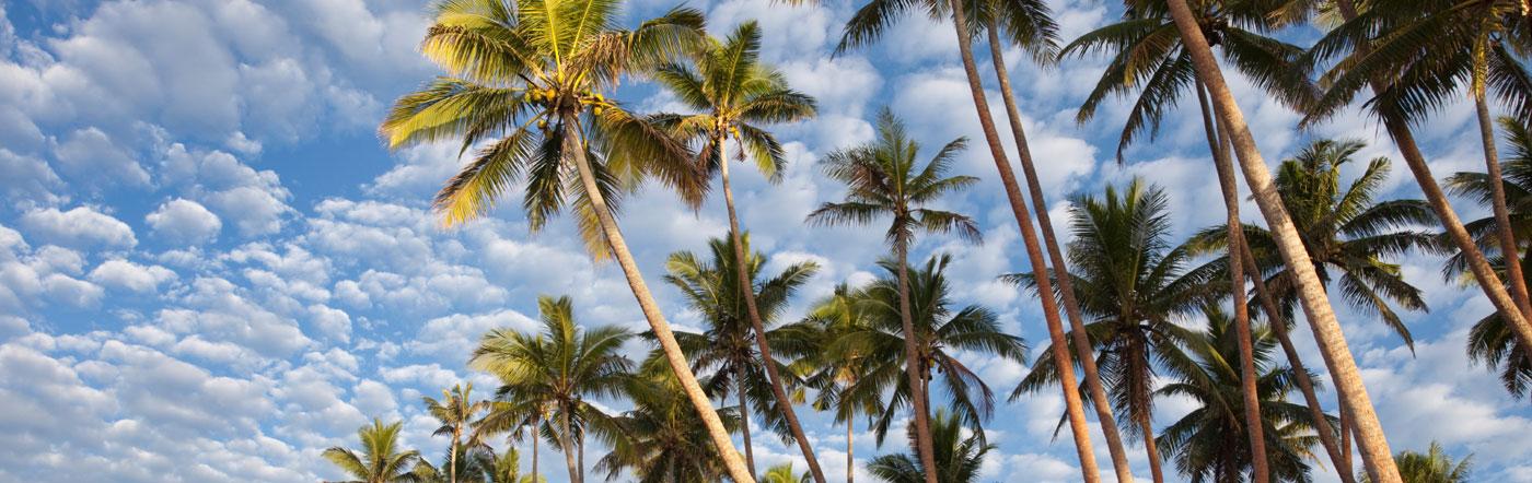 Ilhas Fiji - Hotéis Nadi