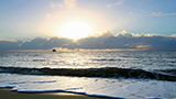 Australien - Palm Cove Hotels