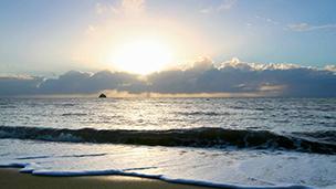 Australien - Hotell Palm Cove