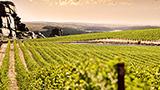 Avustralya - Barossa Valley Oteller