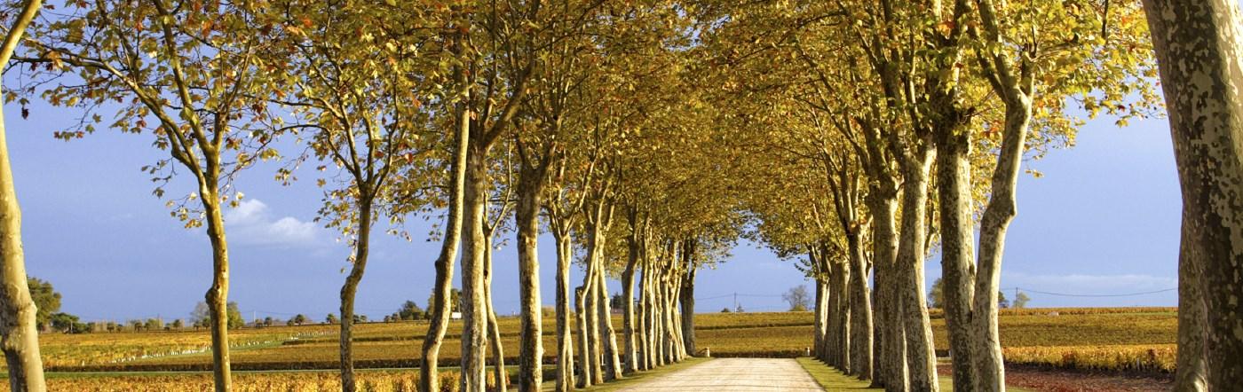 Fransa - Saint Martin De Crau Oteller