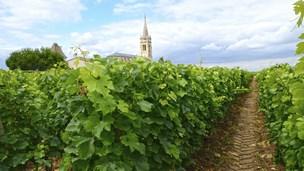 Francja - Liczba hoteli Saint Medard en Jalles