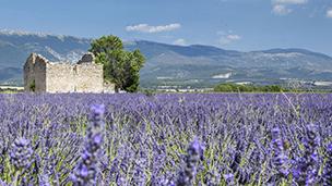 Frankrijk - Hotels Valence