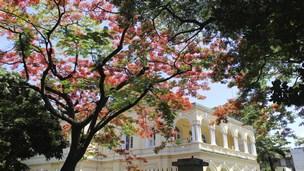 Mauritius - Hotell Port Louis