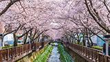 Южная Корея - отелей Чангвон