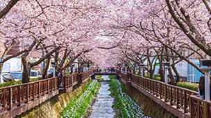 South Korea - Hotéis Changwon