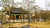 Korea Republika - Liczba hoteli Daegu