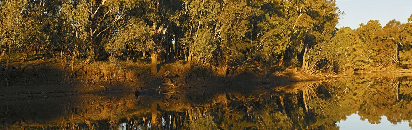 Austrália - Hotéis Wagga Wagga