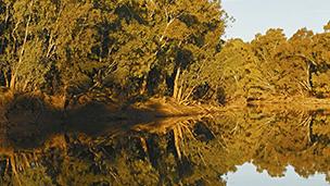 Avustralya - Wagga Wagga Oteller