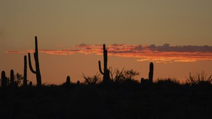 Meksyk - Liczba hoteli Guaymas