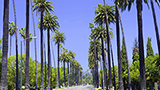 EEUU - Hoteles Los Angeles