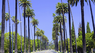 الولايات المتحدة - فنادق لوس أنجلوس