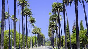 Stany Zjednoczone Ameryki - Liczba hoteli Los Angeles
