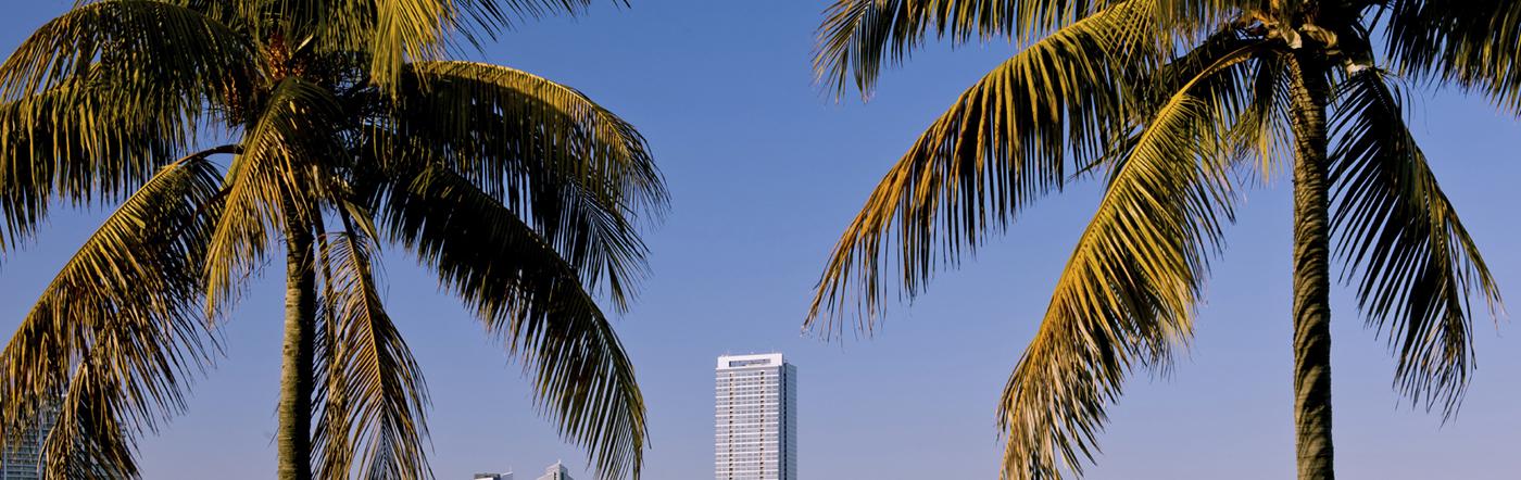 الولايات المتحدة - فنادق ميامي