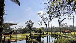 巴西 - 圣若泽多斯坎波斯酒店