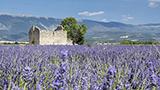 Fransa - DROME Oteller