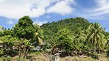 Endonezya - Kalimantan du Sud Oteller